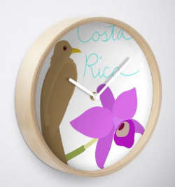 Costa Rica Pillows and Clocks - Home Decor